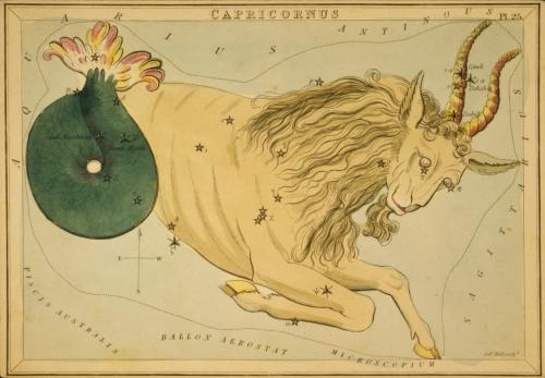 CAPRICORN-SEAGOAT-NEWMOON